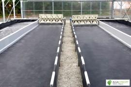 Bassin spiruline complet largeur 4 m